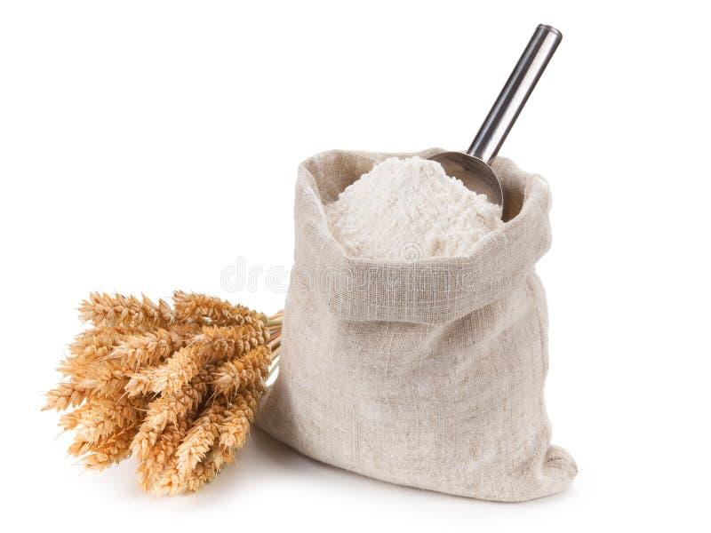 袋子整个面粉和束麦子在白色背景 免版税库存图片