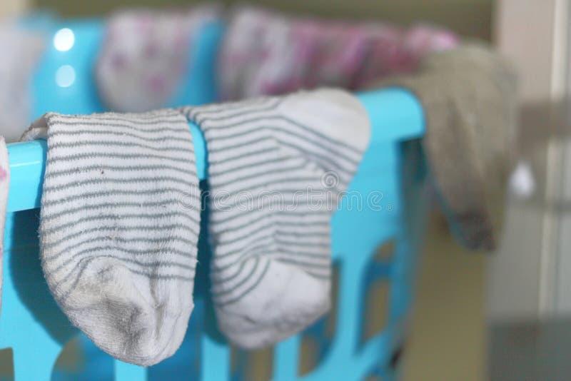 袜子干燥在室内篮子 库存图片