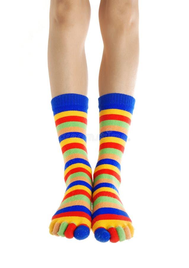 袜子类身分 免版税图库摄影