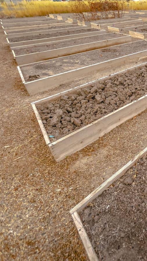 被上升的木庭院床垂直的行与龙头和填装用粗糙的棕色土壤 库存图片