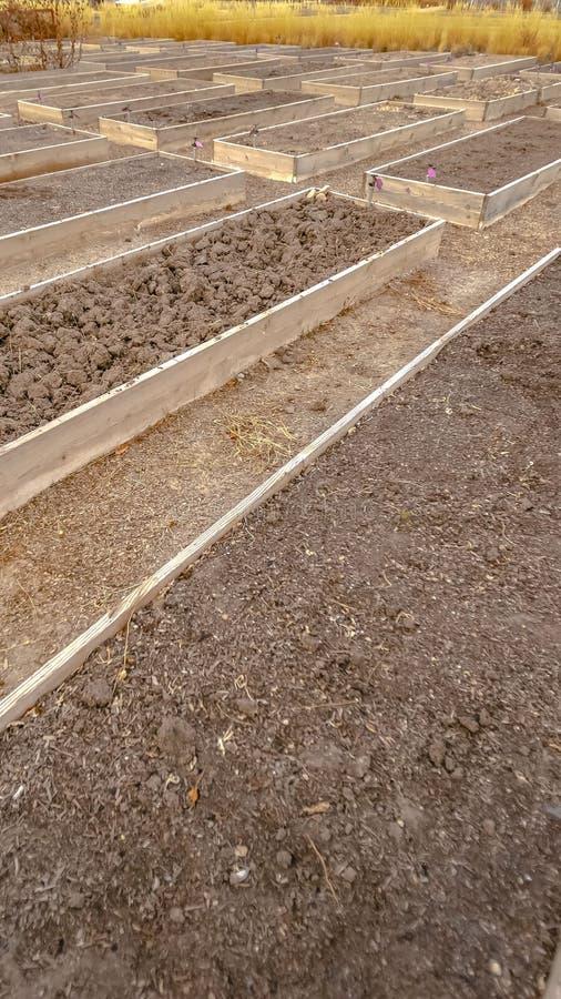 被上升的木庭院床清楚的垂直的行与龙头和填装用粗糙的棕色土壤 库存图片