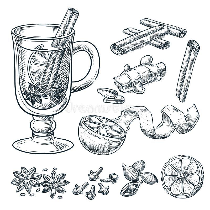 被仔细考虑的酒食谱,传染媒介剪影例证 套被隔绝的手拉的香料,成份 库存例证