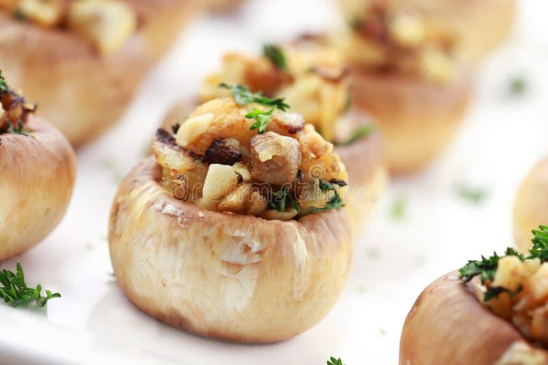 被充塞的蘑菇 免版税图库摄影