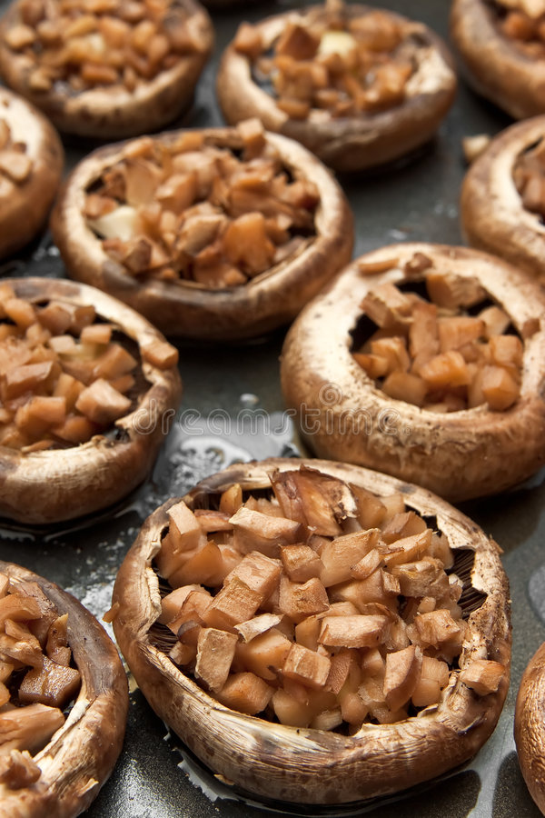 被充塞的蘑菇 库存图片