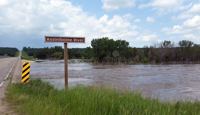 被充斥的阿希尼伯恩河,在Treherne附近,马尼托巴 免版税图库摄影