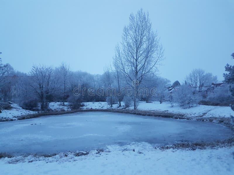 被冰的湖 库存图片