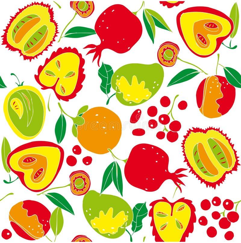 被分类的果子例证 库存例证