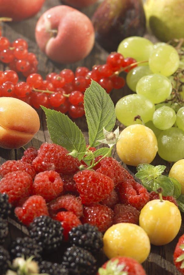 被分类的果子夏天 免版税库存照片