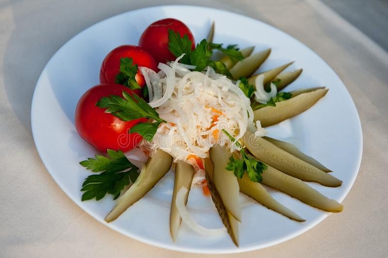 被分类的腌汁用烂醉如泥的蕃茄、德国泡菜和酱瓜-俄国伏特加酒的最佳的快餐! 图库摄影