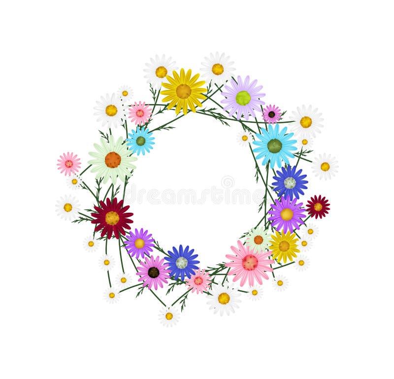 被分类的五颜六色在白色背景的雏菊花圈 皇族释放例证