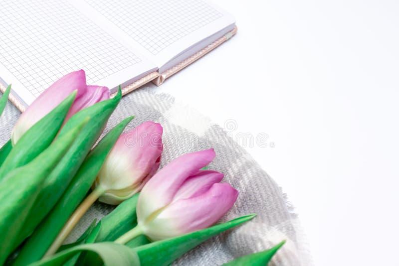 被切开的桃红色淡紫色郁金香花束与一个笔记本的在与拷贝空间关闭的白色背景 免版税图库摄影