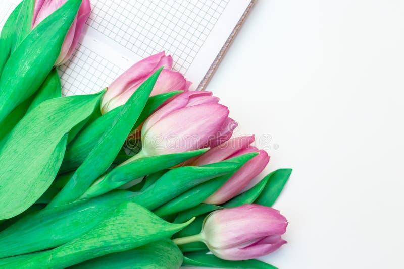 被切开的桃红色淡紫色郁金香花束与一个笔记本的在与拷贝空间关闭的白色背景 库存照片