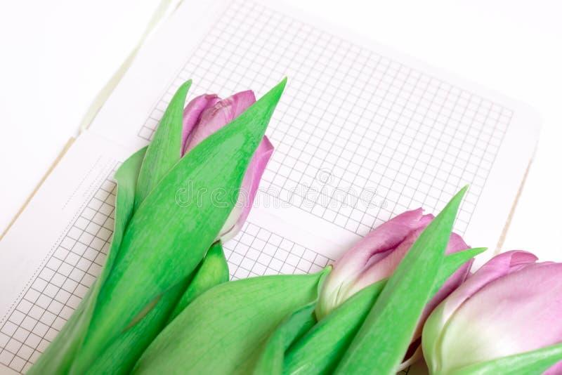 被切开的桃红色淡紫色郁金香花束与一个笔记本的在与拷贝空间关闭的白色背景 免版税库存图片