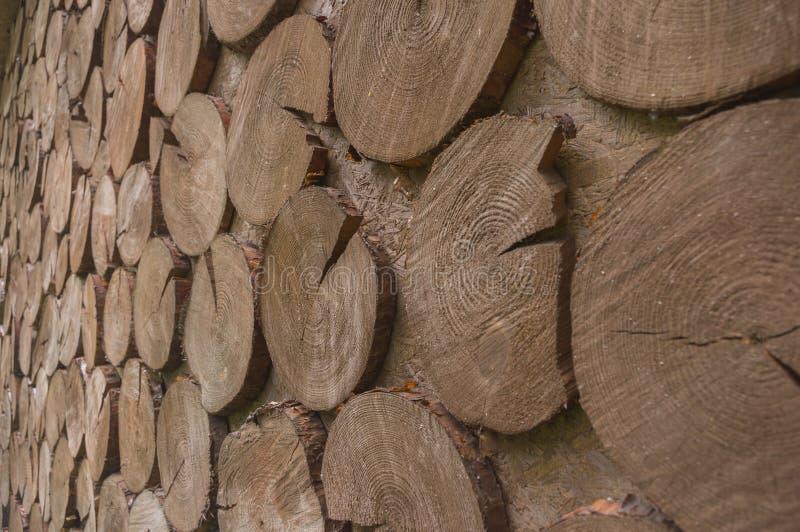 被切的†‹â€ ‹木头表面盘旋2 免版税库存图片