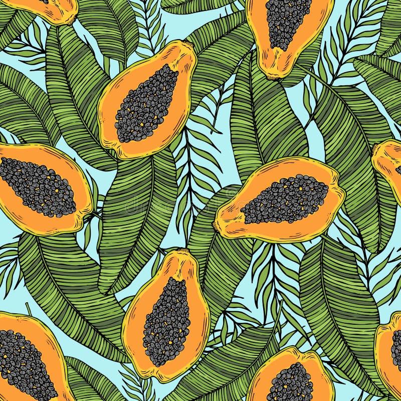 被切的番木瓜的样式与热带叶子的 在匙子的一个干早餐 皇族释放例证