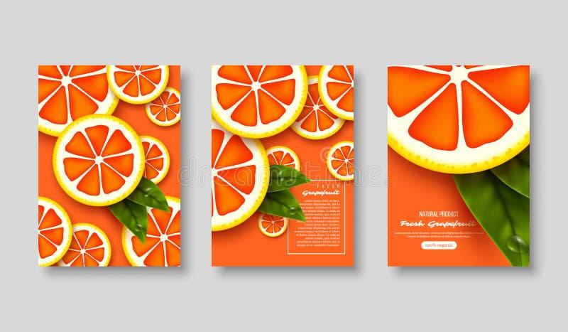 被切的葡萄柚海报集合 库存例证