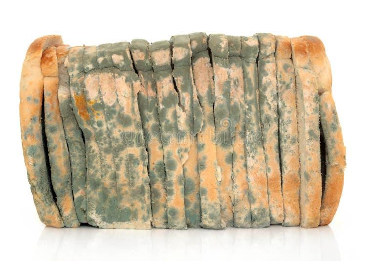 被切的面包发霉 库存图片