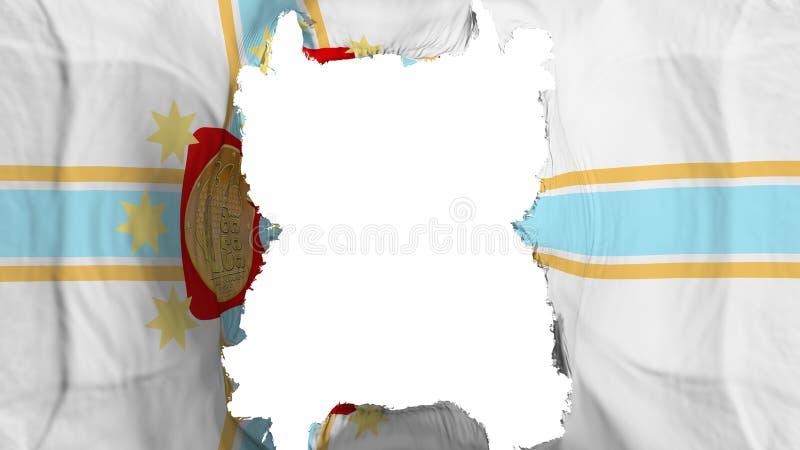 被剥去的第比利斯市飞行旗子 向量例证