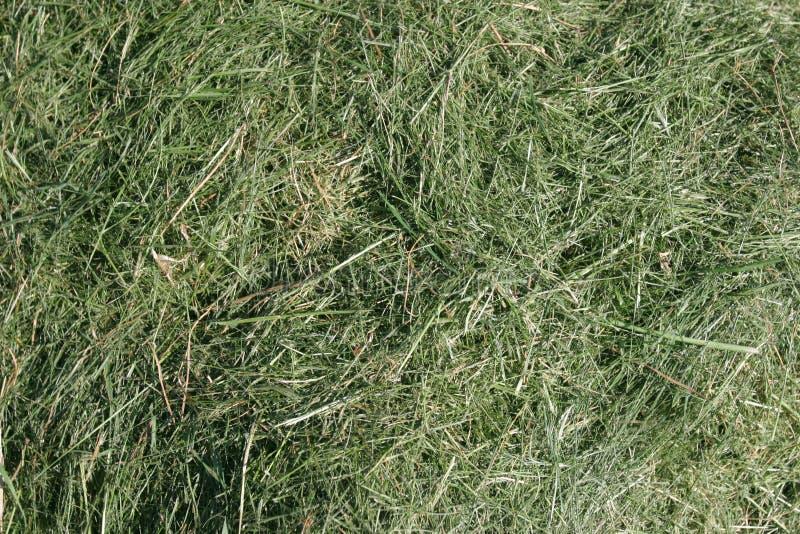 被割的草背景 库存照片