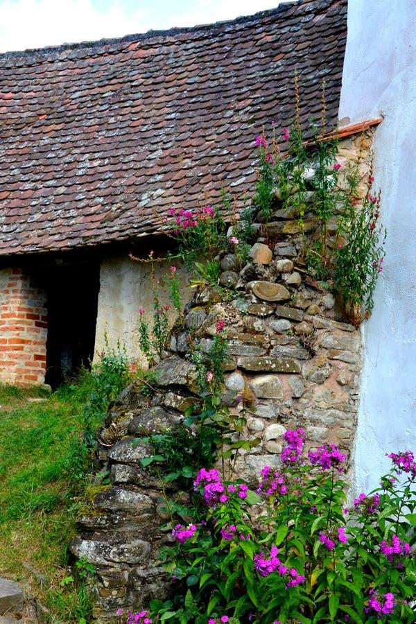 被加强的中世纪教会的庭院在Viscri,特兰西瓦尼亚 免版税库存图片