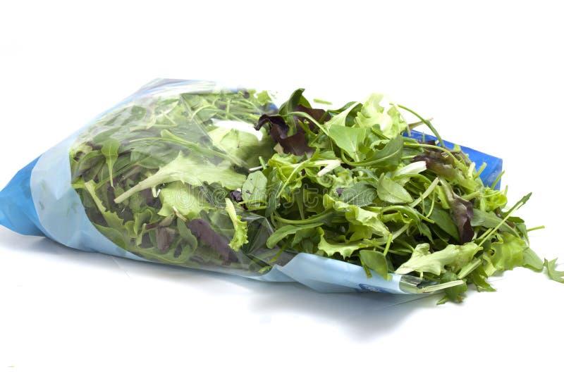 被包装的各种各样的季节性沙拉 免版税库存照片