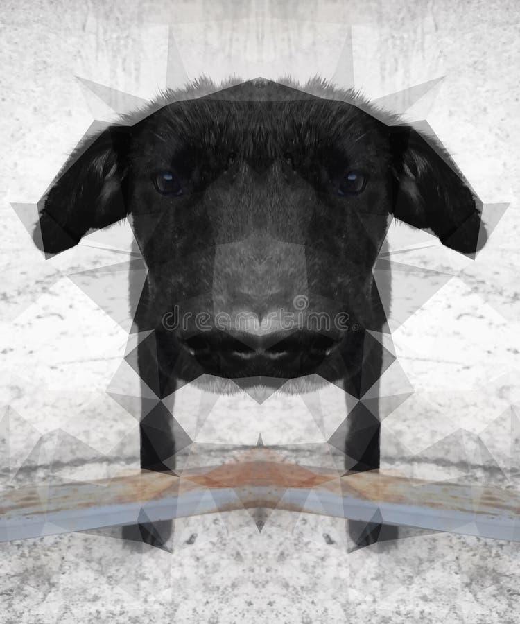 被反映的狗 库存例证
