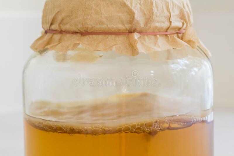 被发酵的Kombucha茶 图库摄影