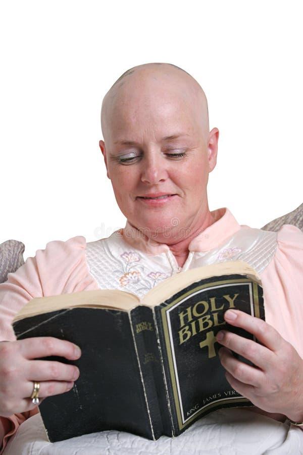 被启发的圣经 库存图片