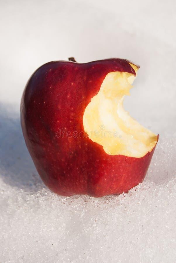 被咬住的一个红色苹果和在雪 免版税库存图片
