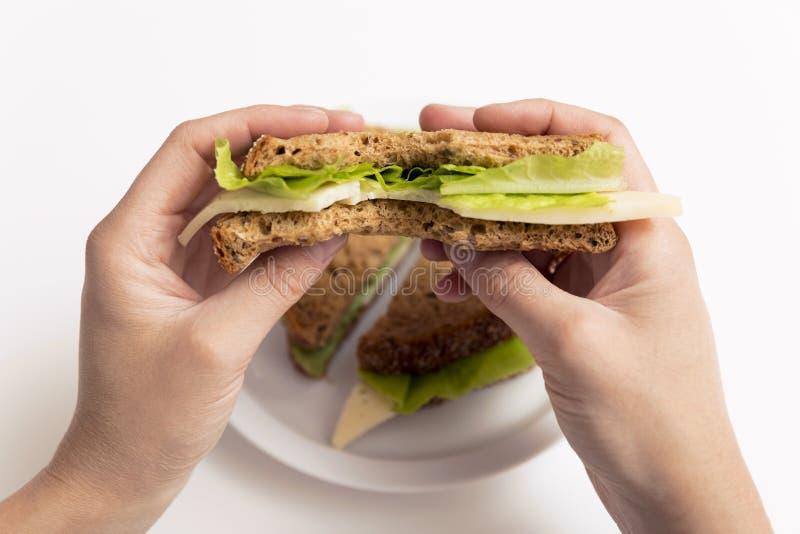 被咬住的乳酪和莴苣三明治在手中,在wh的整个三明治 库存图片