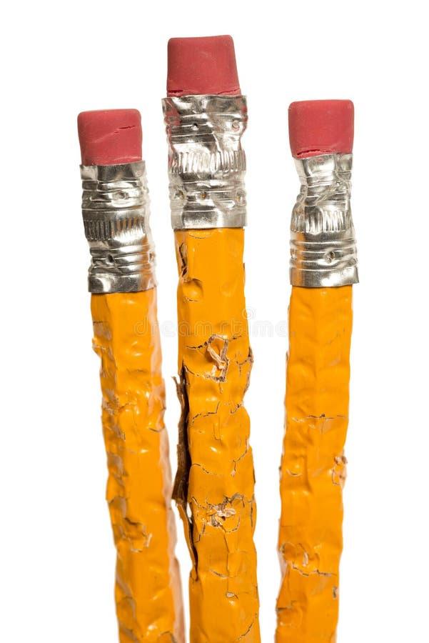 被嚼的铅笔XXXL查出的组 免版税库存图片