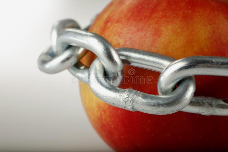 被囚禁的苹果计算机 库存照片