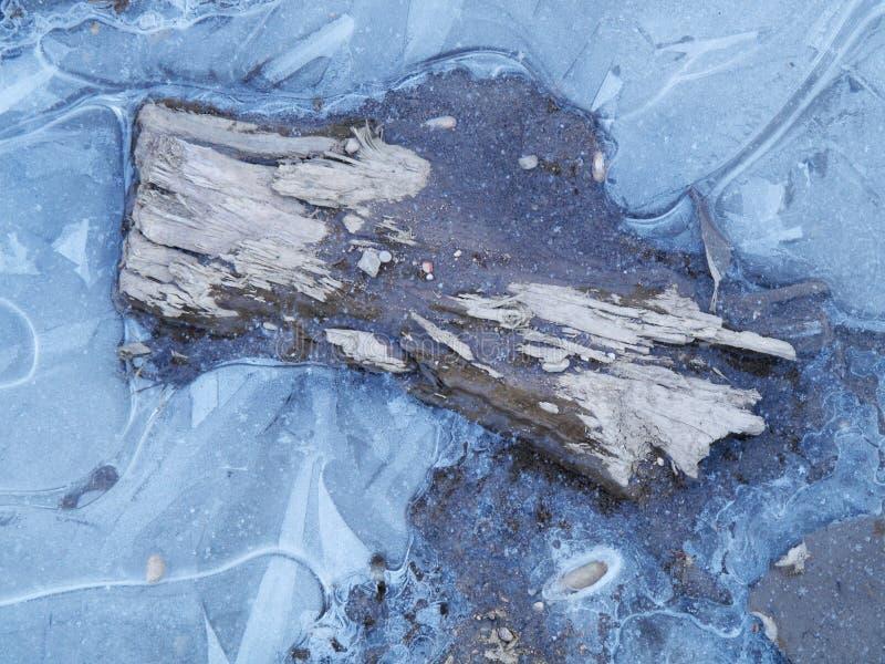 被困住的木头 库存图片