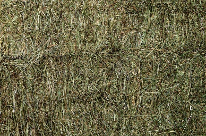 被堆的被按的干草捆 库存照片