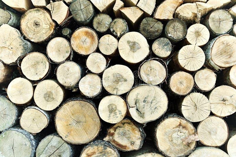 被堆积的树木日志-与口气更正的自然木背景 免版税库存照片