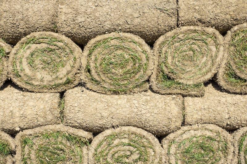 被堆积的绿色草坪卷 免版税图库摄影