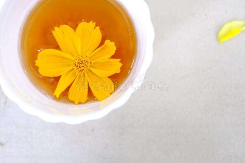 被安置的热的茶杯 免版税库存图片