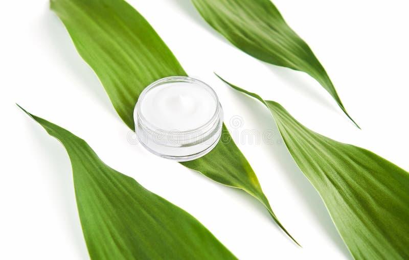 被安置的白色奶油色瓶,嘲笑的空白的标签包裹在绿色叶子背景 自然美容品的概念 免版税库存图片