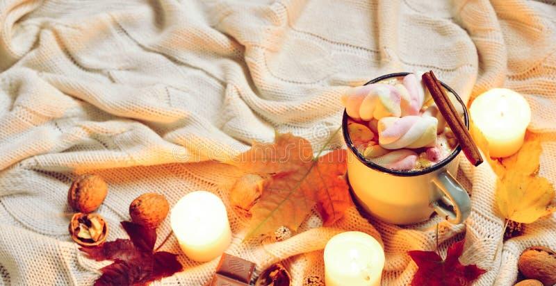 被定调子的秋天横幅由干秋天制成离开,杯子可可粉与marshmellows,坚果,桂香,在米黄格子花呢披肩的蜡烛 免版税图库摄影