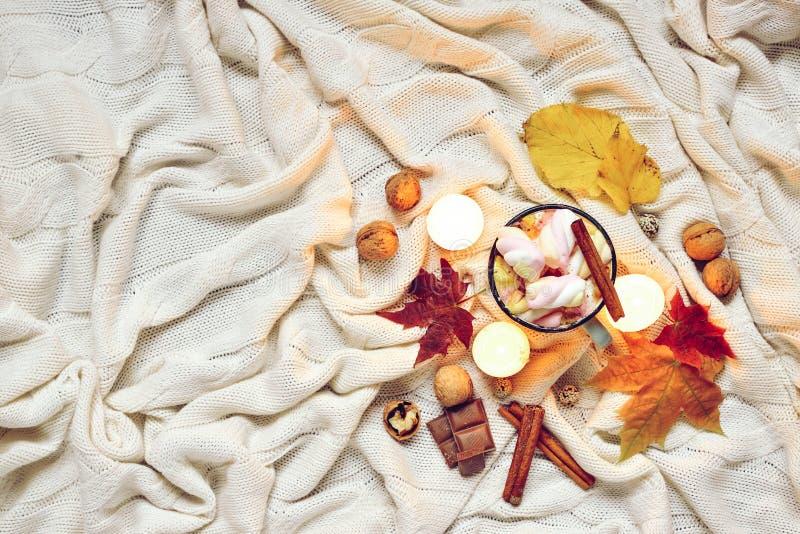 被定调子的秋天由干秋天制成离开,杯子可可粉与marshmellows,坚果,桂香,在米黄格子花呢披肩的蜡烛 免版税库存照片