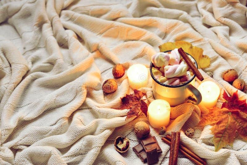 被定调子的秋天由干秋天制成离开,杯子可可粉与marshmellows,坚果,桂香,在米黄格子花呢披肩的蜡烛 免版税库存图片