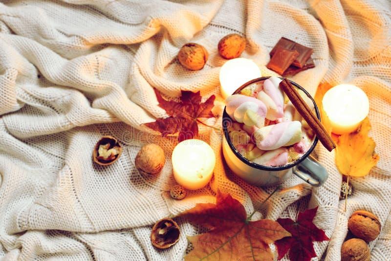 被定调子的秋天由干秋天制成离开,杯子可可粉与marshmellows,坚果,桂香,在米黄格子花呢披肩的蜡烛 库存照片