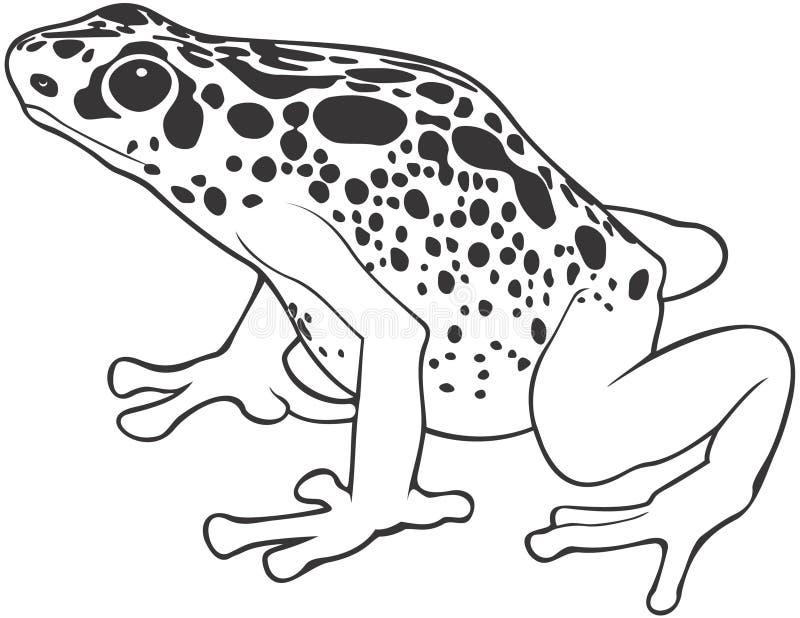 被察觉的青蛙 向量例证