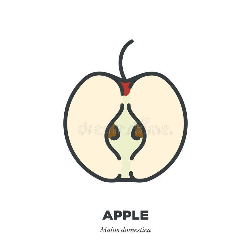 被对分的苹果象,填装了概述样式传染媒介 库存例证