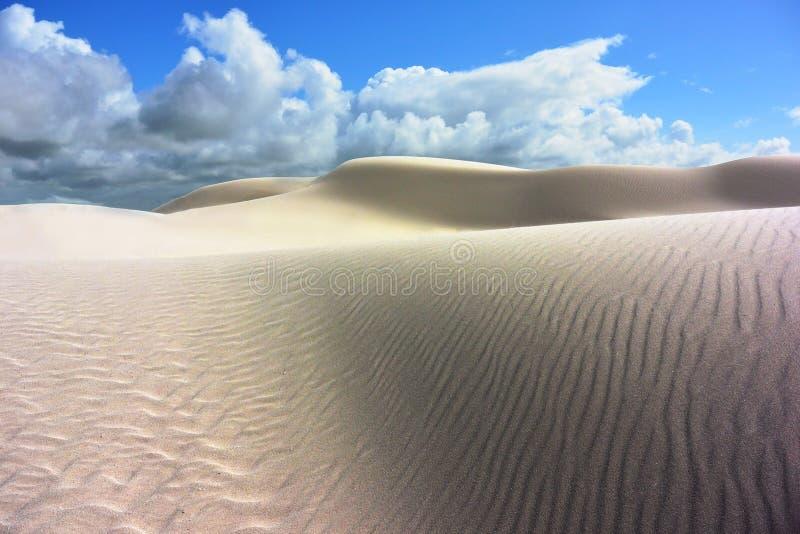 被对比的白色沙丘在一片沙漠在南澳大利亚 免版税图库摄影