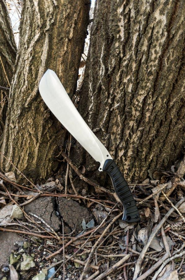被射击的刀子有一个角度 由树的一把大刀子 免版税库存照片