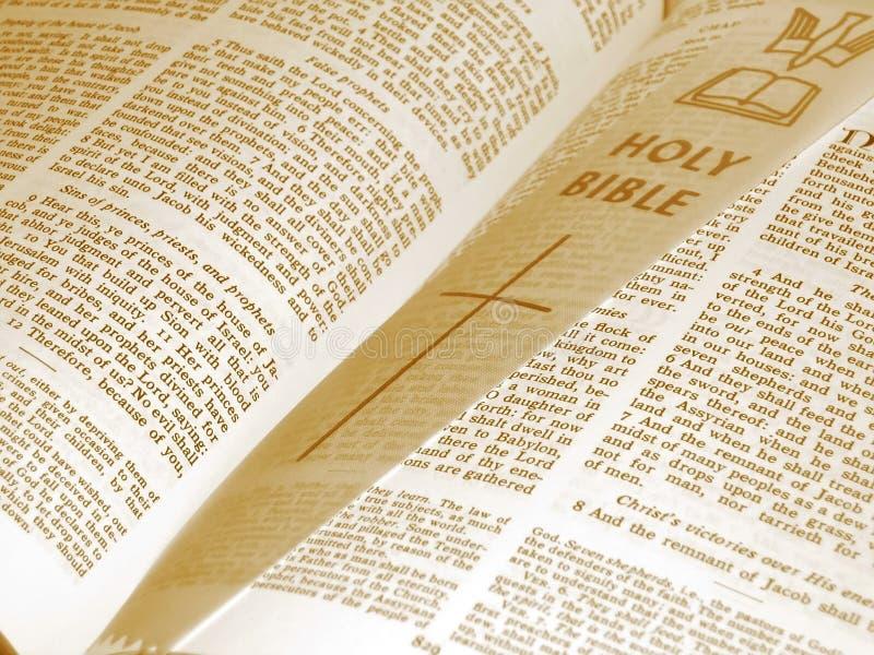 被开张的圣经 库存图片
