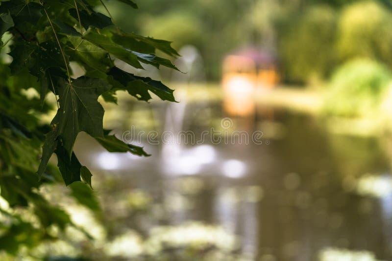 被弄脏的喷泉的五颜六色的照片在一个公园,在有树叶子的森林之间在前景 图库摄影