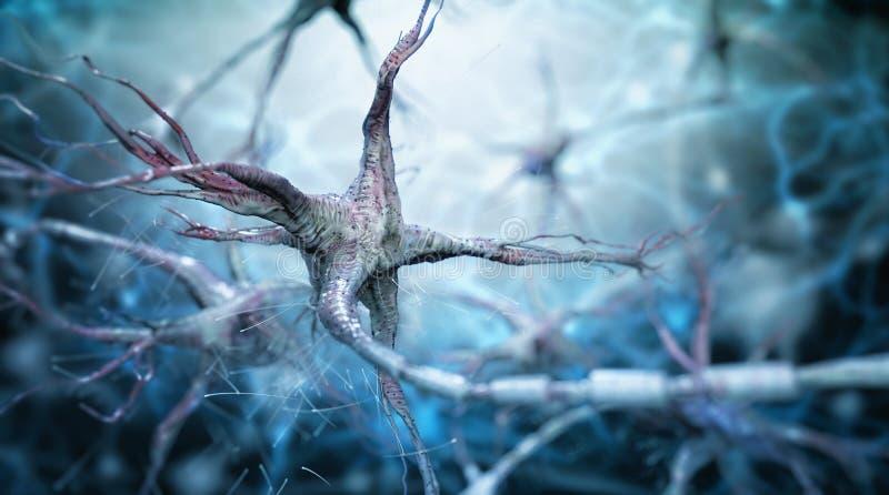 被弄脏的电池考试微观被挂接的神经神经元 皇族释放例证