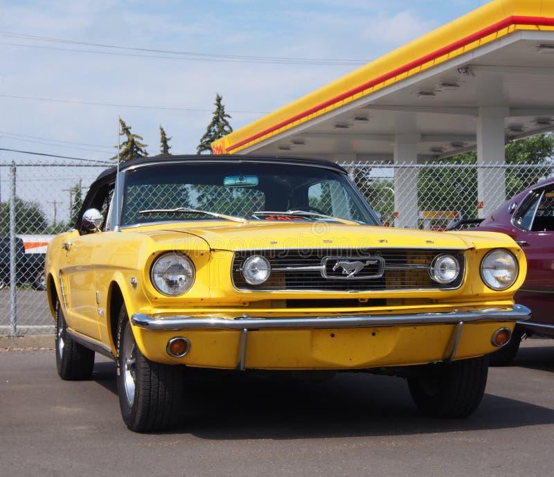 被恢复的古色古香的黄色Ford Mustang敞篷车 库存照片
